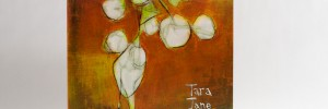 Tara Jane ONeil - In The Sun Lines LP jacket front cover