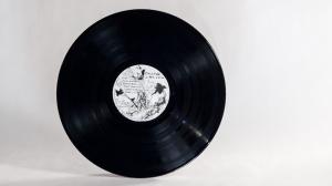 Calexico - Garden Ruin LP disc side A