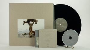 Shellac - Dude Incredible all formats