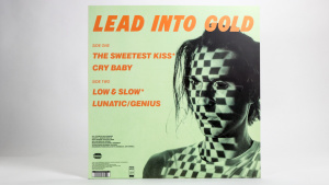 Lead Into Gold - Low & Slow 12 inch jacket back cover