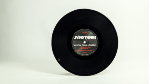 Living Things - Turn In Your Friends And Neighbors ten inch B side