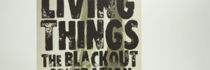 Living Things Blackout Generation ten inch vinyl jacket front